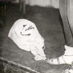023 Jazbec pred soi__em 1976